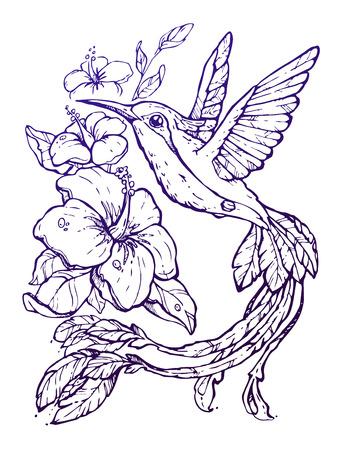 tatouage oiseau: Belle illustration avec colibri et de fleurs, croquis dessiné à la main