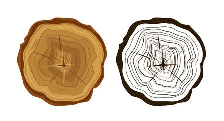 Iconos árbol cortado, anillos de los árboles ejemplo, color y monocromo Ilustración de vector