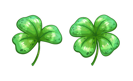lucky clover: Realistic clover leaves.