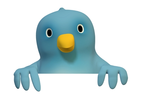 wildcard: A bluebird ( Blue Bert) with on area to fill in your text Stock Photo