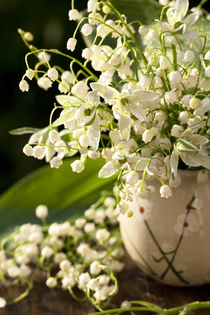 Lily of the valley sunlit  photo
