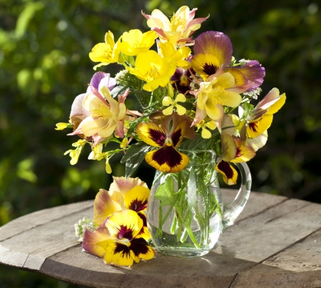 cartoon bouquet: bouquet of flowers pansies in a jar of glass and aquilegia pink