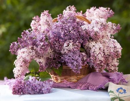 tasse de porcelaine avec le café et le lilas