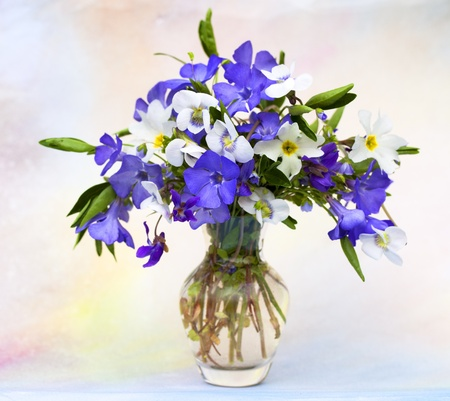 bouquet of spring flowers  photo