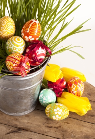 easter egg hunt: Easter eggs and tilips