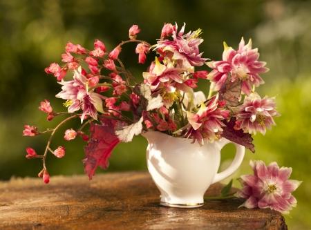 aquilegia: bouquet of spring flowers Stock Photo