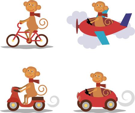 sport bike: Set - cute monkey with scarf on scooter, bike, airplane, car Illustration