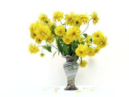 bouquet of yellow flowers in vase isolated Standard-Bild