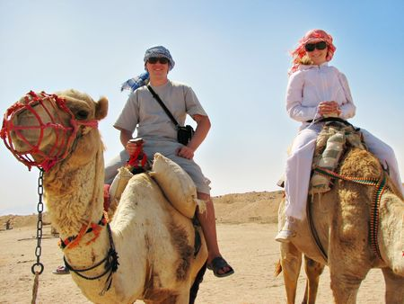 desert animals: people traveling on camels in egypt desert Stock Photo