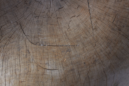 Old wooden background texture Standard-Bild