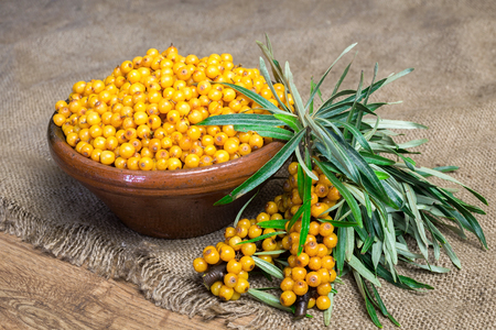 Ripe sea-buckthorn berries in a clay bowl along with a branch