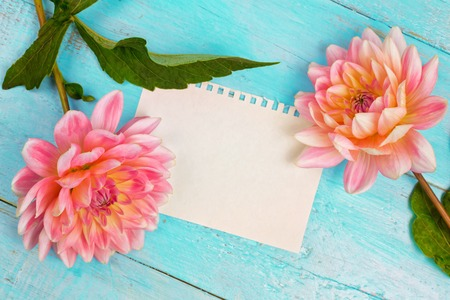 dahlias and a canvas on a blue wooden background. art. Summer background with a space for a text