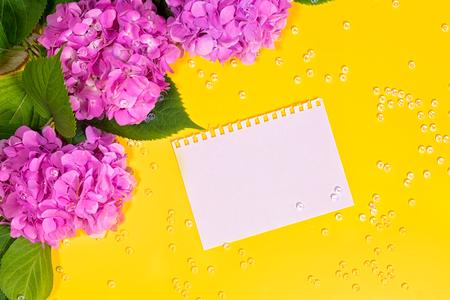 beautiful hydrangea flowers. Trendy fashion Style. Spring Summer Floral concept. Creative Minimal. Pink Blossom, Bright Color. Art Reklamní fotografie - 122727322