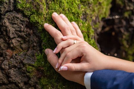 the hands of the bridegroom with the wedding rings, on the tree whilethis moss. Without a face. Close-up Фото со стока