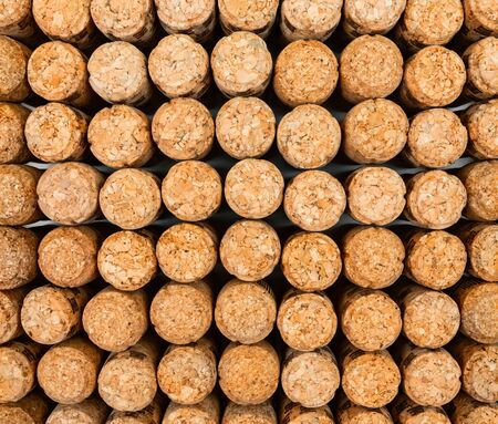 texture of wine corks. top view. place for text