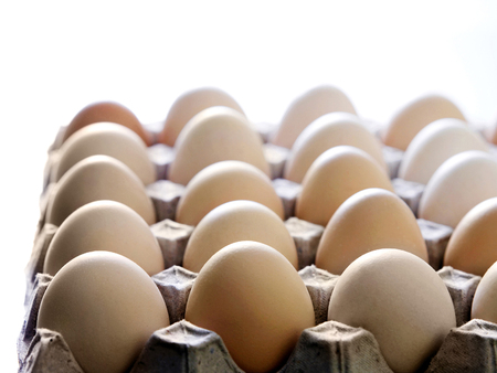 A full tray of eggs