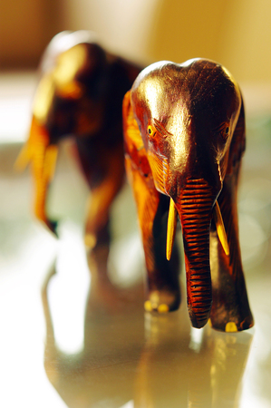 Studio shot of wooden elephants as decorative item 写真素材