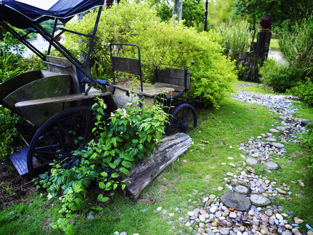 scenery of a garden ,close up on the cart Stok Fotoğraf