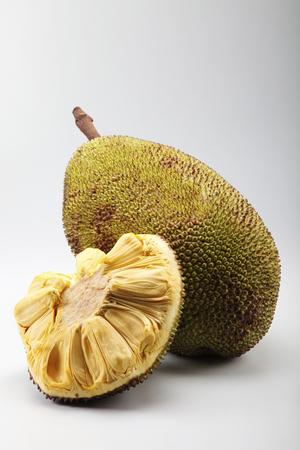 raw fruit jackfruit or artocarpus on the plain background Stock Photo