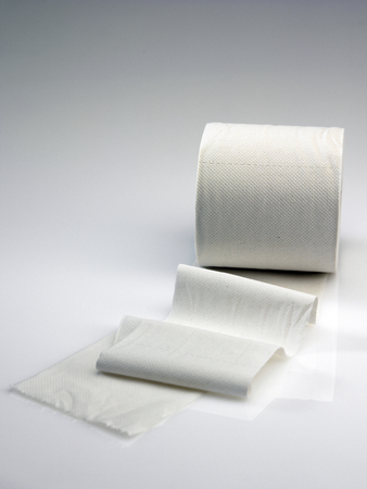 toilet roll on the plain background Stock Photo