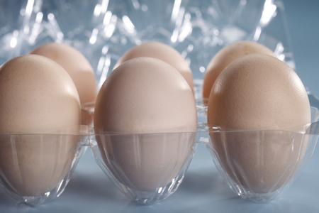 close up of the egg   at plstic tray Stock Photo