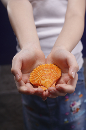 Little girl holding a seashell in both of her hands.