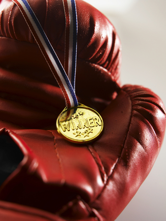 close up of the medal on the boxing glove