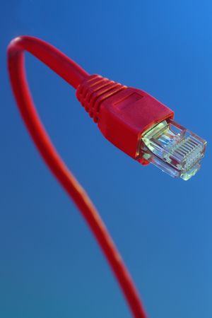 close up of the network cable