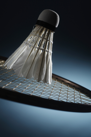 Shuttlecock on badminton racket Stock Photo