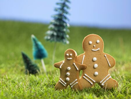 ginger bread man on the grass