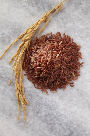 top view of the brown rice and the paddy