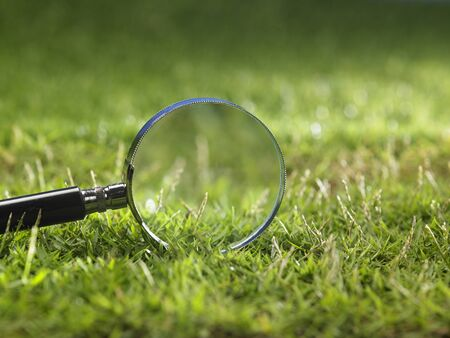 magnifying glass on the grass 스톡 콘텐츠