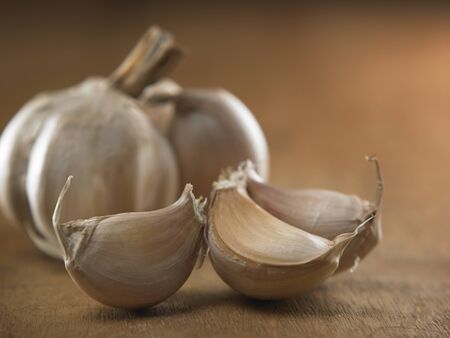 close up of the garlic