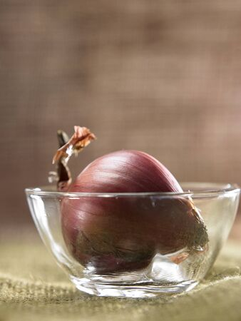 close up of the onion in a glass bowl