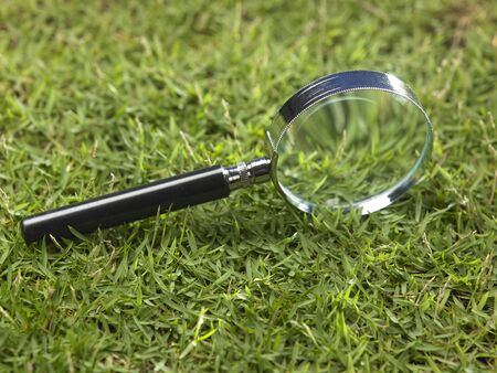 magnifying glass on the grass Stock fotó
