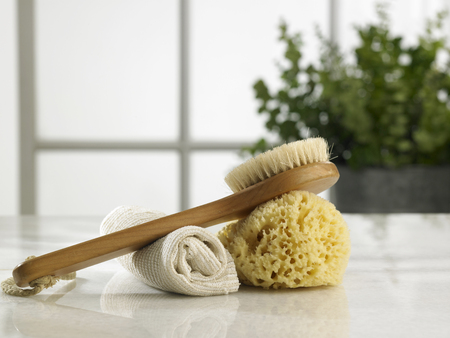 brush ,sponge and rolled up hand towel 版權商用圖片