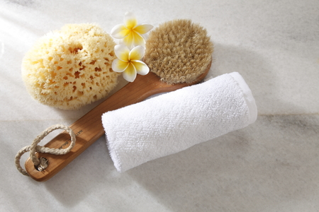 widok z góry gąbki, pędzla, ręcznika i kwiatka