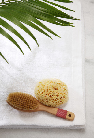 top view of the natural sponge anf brush Archivio Fotografico
