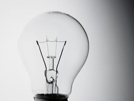 light bulb on the white background