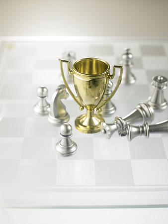 trophy owith chess pieces on the chess board