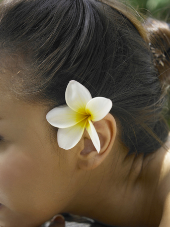 close up of frangipani on the girl ear Imagens
