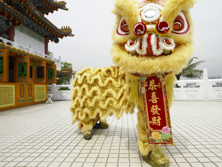 lion dance performer with chinese banner Imagens
