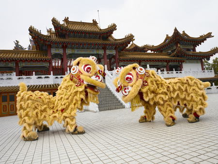 2 lion dance performers facing each other