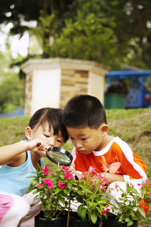 children holding magnifying glass focus on the flowers