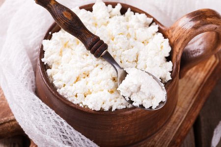 cottage cheese: Homemade cottage cheese, selective focus