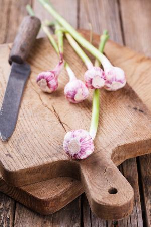 scurvy: Young garlic on a wooden dosochki.selective focus