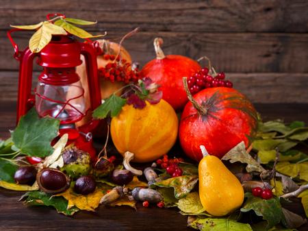 Autumn still-life. Autumn background. Decorative pumpkins, colorful leaves, chestnuts, acorns, Rowan and cranberries. selective focus.
