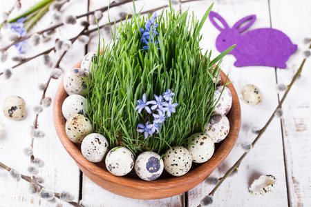 Quails egg on grass in a brown flowerpot.