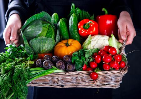 coliflor: Hands holding big basket with different fresh farm vegetables. Harvest. Food or Healthy diet concept. Foto de archivo