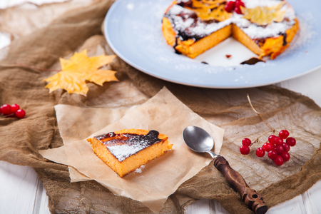 Autumn Cake Fragrant Pastry Pumpkin Cranberry Leaves Stock Photo